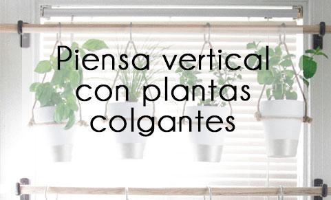 Decora el interior de tu hogar con plantas colgantes